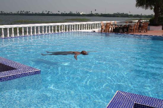 Citrus Lakeside Sriperumbudur: Swimming Pool