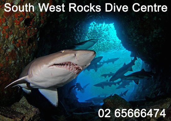 ‪South West Rocks Dive Centre‬