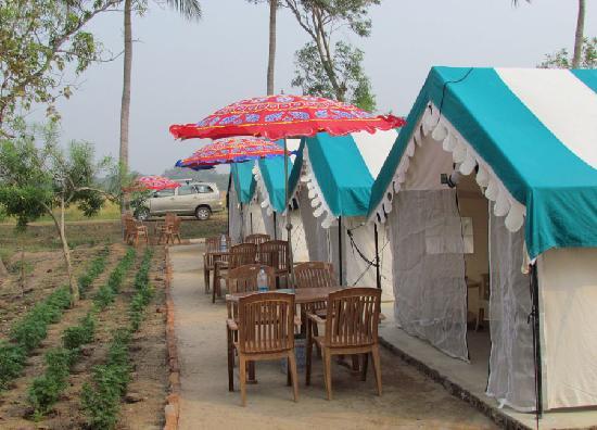 Sand Pebbles Bhitarkanika Jungle Resorts: Sand Pebbles Bhitarkanika Jungle Resorts, Orissa, India