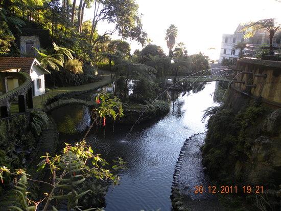 Madeira Botanical Garden : Monte Palace Garden