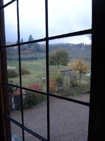 Villa Campestri Olive Oil Resort: window view