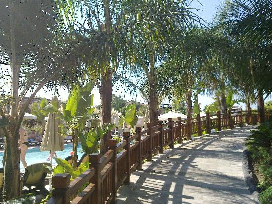 Royal Dragon Hotel : Gartenanlage