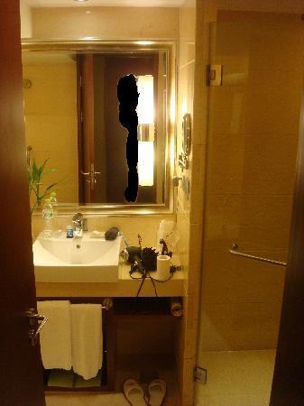 HaiWaiHai Crown Hotel: bath