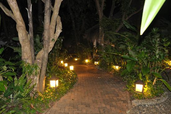 Mandala Spa & Resort Villas: The garden