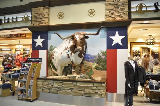 Marriott  Houston Airport at George Bush Intercontinental : nice