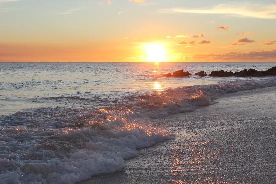 Turtle Beach by Elegant Hotels 사진
