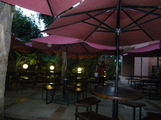 Nairobi International Youth Hostel: Java coffee gardens