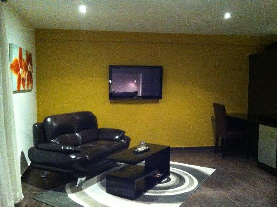 The Panams: Lounge and big TV
