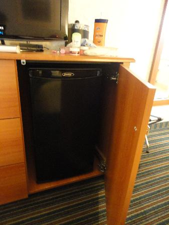 BEST WESTERN PLUS Ottawa Kanata Hotel & Conference Centre: Fridge in room