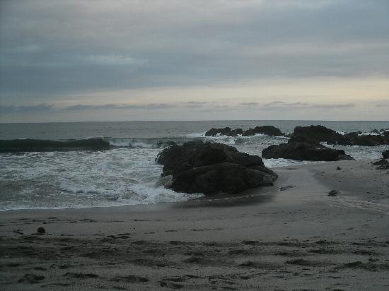 El Sano Banano Village Hotel: montezuma beach/shore