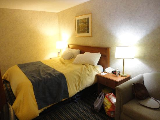 Best Western Plus Ottawa Kanata Hotel & Conference Centre: Bed