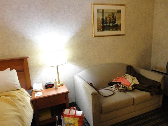 Best Western Plus Ottawa Kanata Hotel & Conference Centre: Couch