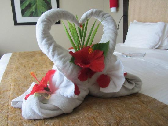 Towel Origami 1 Picture Of Club Med Punta Cana Punta Cana