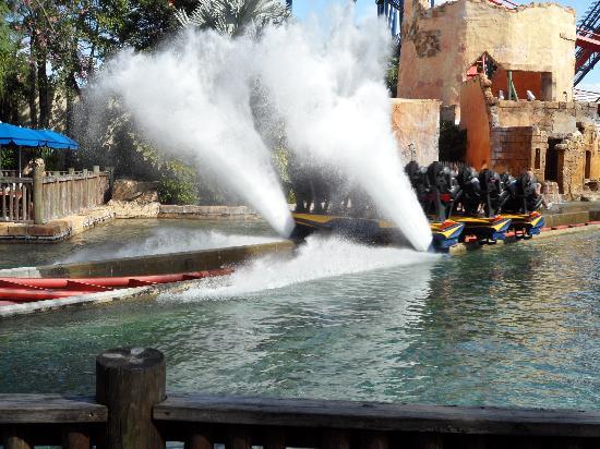 Busch Gardens Tampa: splashdown sheikra