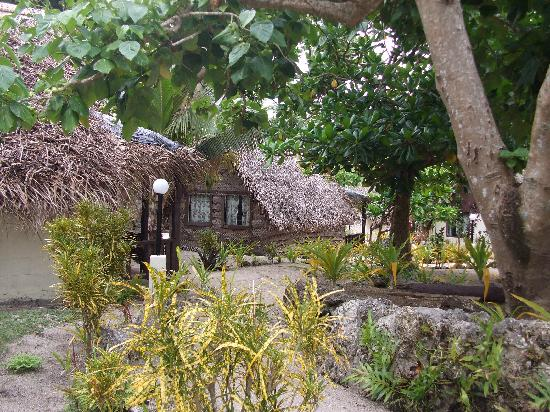Ha'atafu Beach Resort: looking through the garden