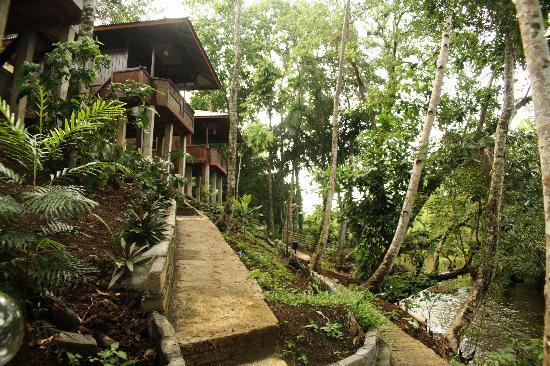 Mamaling Resort Bunaken: to the rooms