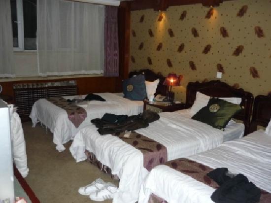Palace Century Hotel : triple room
