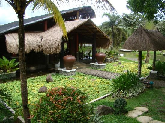 Rafael Farm: The Resto