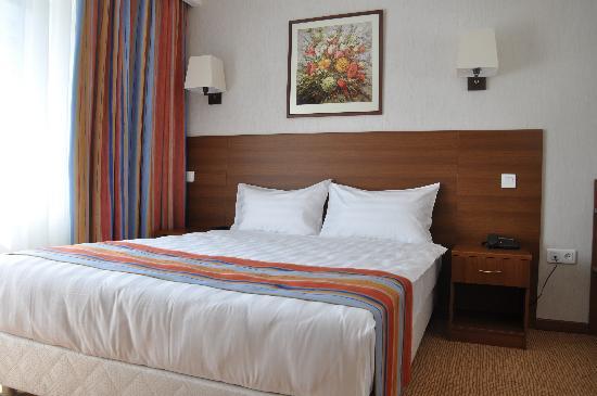 Hotel Aminevskaya: Double Standard Room