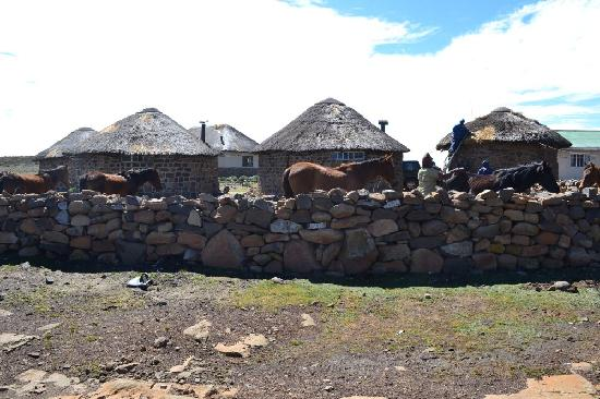 Sani Mountain Lodge: Rondavels - roof work