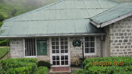 Heritance Tea Factory: The Small Working Tea Factory