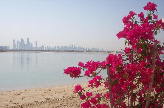Atlantis, The Palm : The view from one of the private beaches