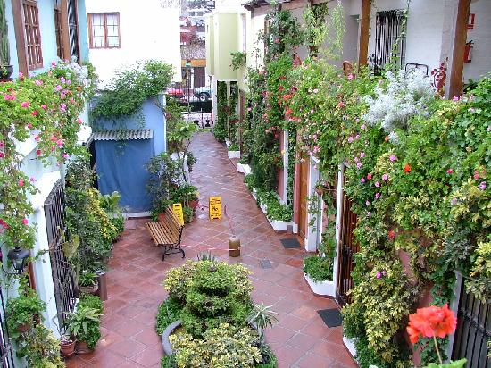 Hostal El Patio: patio