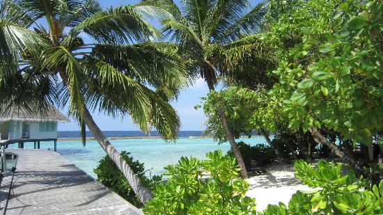 Ellaidhoo Maldives by Cinnamon: Beauté d'un décor de rêve au bout du monde