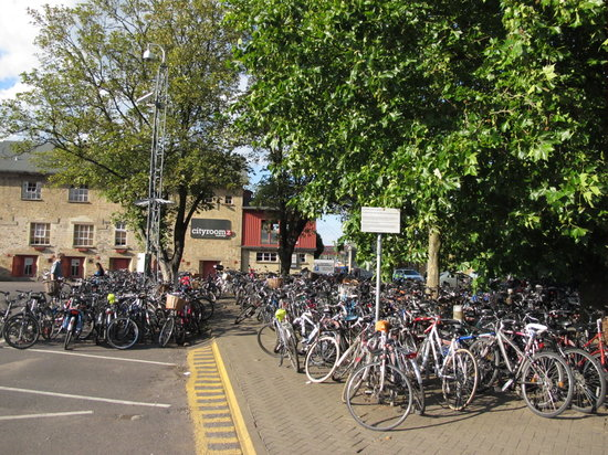 Stationroomz: bicycle craziness out the front!