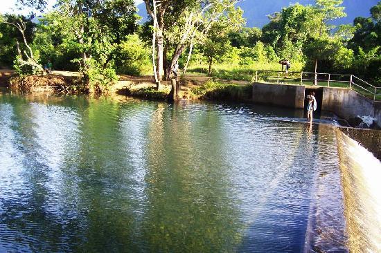 Eads Natural Pool And Backyard Resort :  slope  Picture of Sanctuary Garden Resort, Magdiwang  TripAdvisor