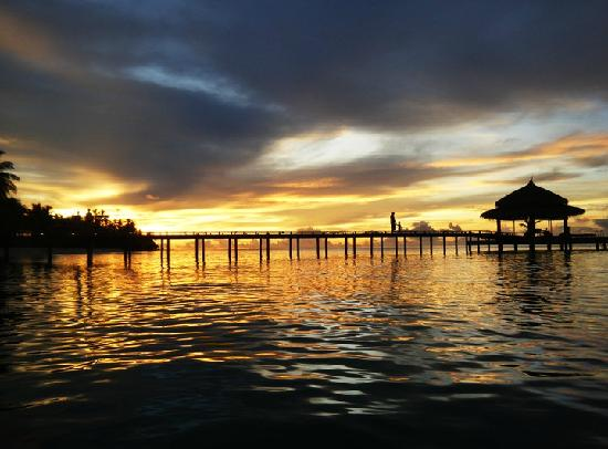 Kuramathi Island Resort: The view from our water villa