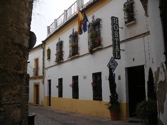 Hostal Osio: Hostel Osia, hidden in old Cordoba.