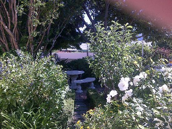 The Corner House: The garden