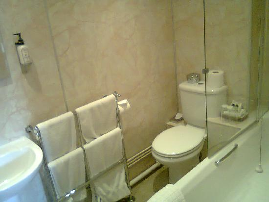 Llanwenarth Hotel & Riverside Restaurant: Bathrooom