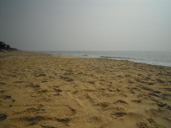 Cherai Beach: Looking south on the beach