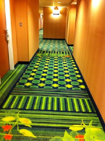 Fairfield Inn & Suites by Marriott St. Augustine I-95: clean hallways