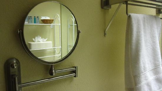 Hampton Inn & Suites Atlanta - Galleria: upclose face mirror