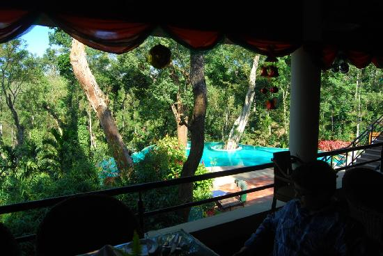 The Windflower Resort and Spa, Coorg: View from the dining area