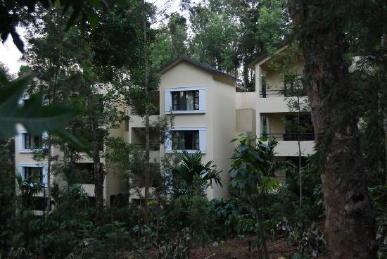 The Windflower Resort and Spa, Coorg: Standard rooms - Blocks of three floors