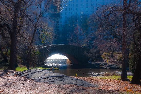 CityRover Walks NY: The Bridge In Central Park - Romantic Edit Dec 8th 2011