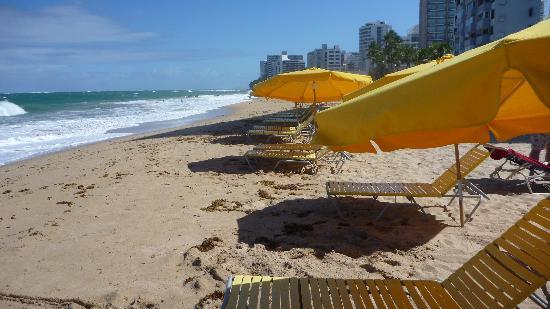 Atlantic Beach Hotel: Beach front