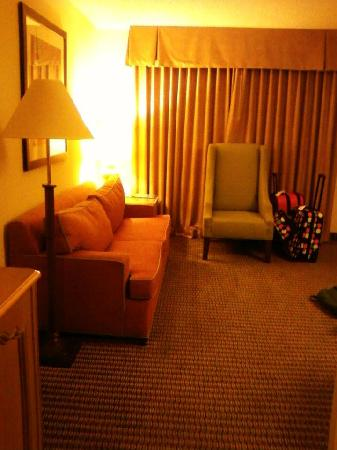 Embassy Suites by Hilton Anaheim North: Living room seating area