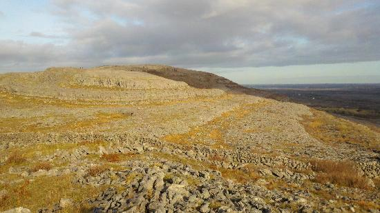 Burren Experience Guided Walks : View from the top
