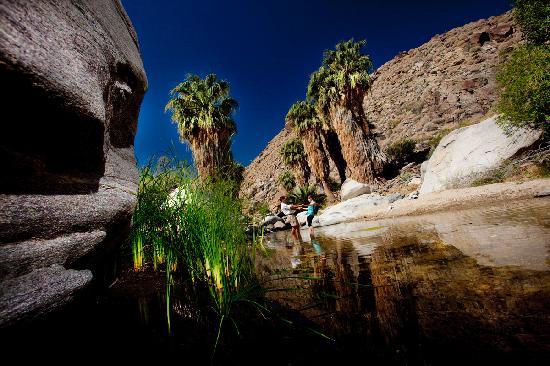 Palm Springs is a Romantic Getaway