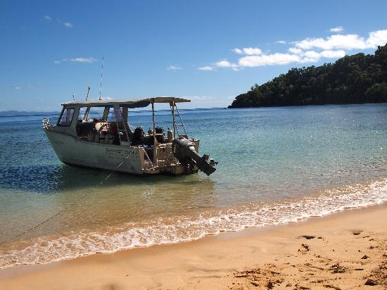 Matangi Private Island Resort: surface interval