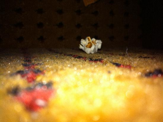 Quality Inn Media: Food and crumbs under the bed