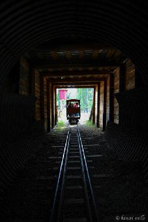 Copperbelt Railway and Mining Museum : The Loki driving through the tunnel
