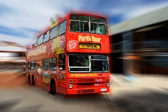 Perth Explorer: City Sightseeing Bus