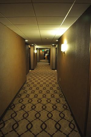Sheraton Indianapolis Hotel at Keystone Crossing : a hallway on one of the floors