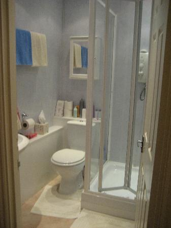 Brittany Guest House: bathroom